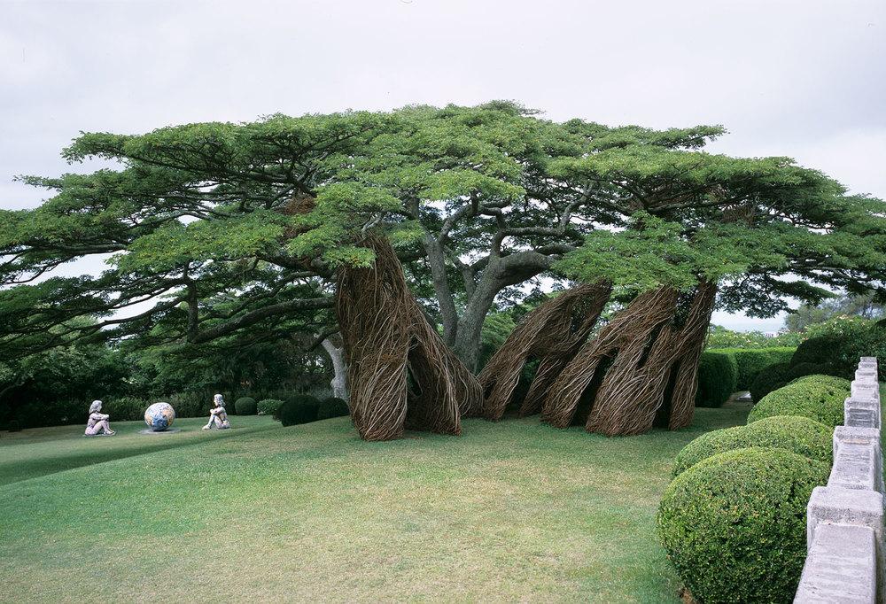 sculture-monumentali-legno-attorcigliato-patrick-dougherty-07