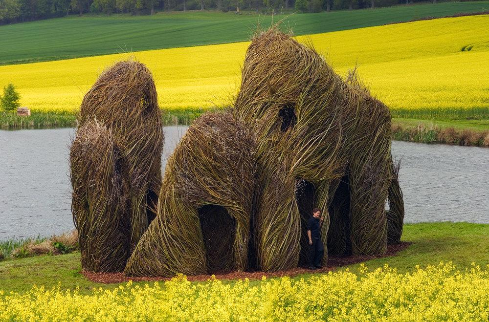 sculture-monumentali-legno-attorcigliato-patrick-dougherty-08