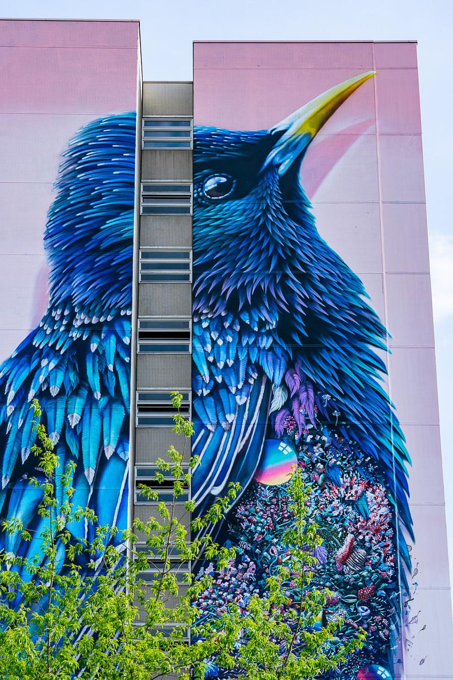 street-art-berlino-murale-gigante-uccello-super-a-collins-van-der-sluijs-3