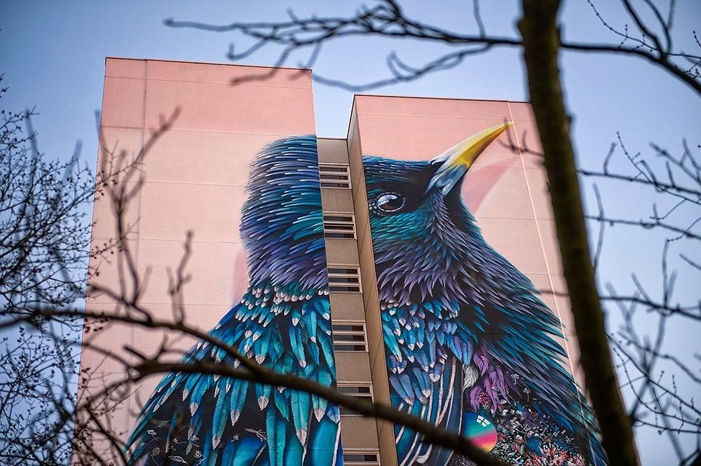street-art-berlino-murale-gigante-uccello-super-a-collins-van-der-sluijs-4