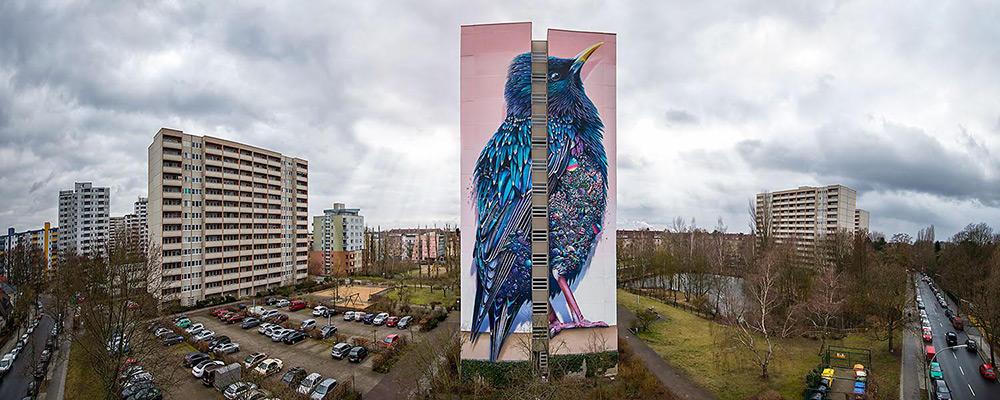 street-art-berlino-murale-gigante-uccello-super-a-collins-van-der-sluijs-5