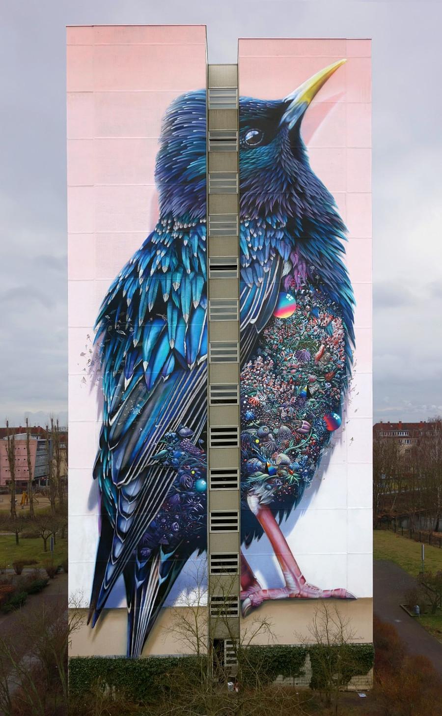 street-art-berlino-murale-gigante-uccello-super-a-collins-van-der-sluijs-6