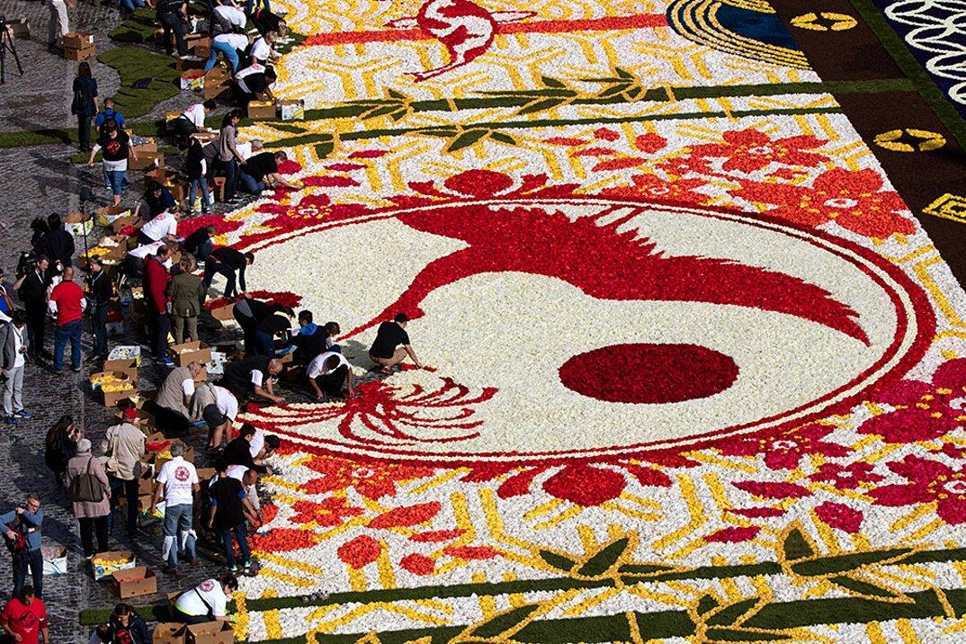 tappeto-fiori-petali-street-art-tapis-de-fleur-grand-place-bruxelles-04