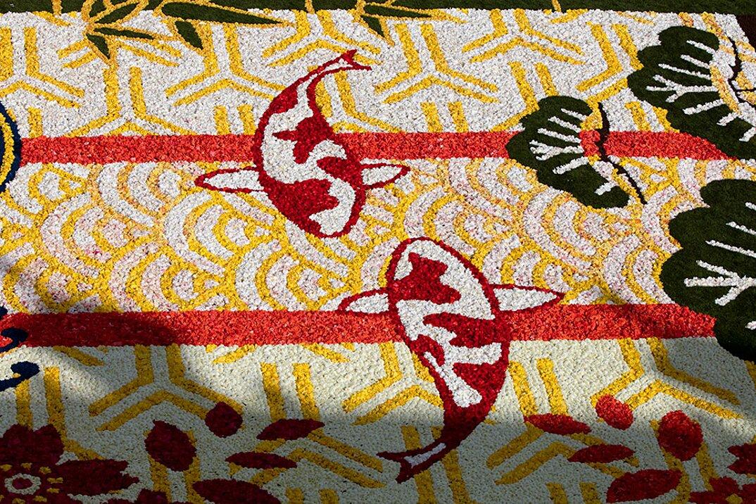 tappeto-fiori-petali-street-art-tapis-de-fleur-grand-place-bruxelles-05