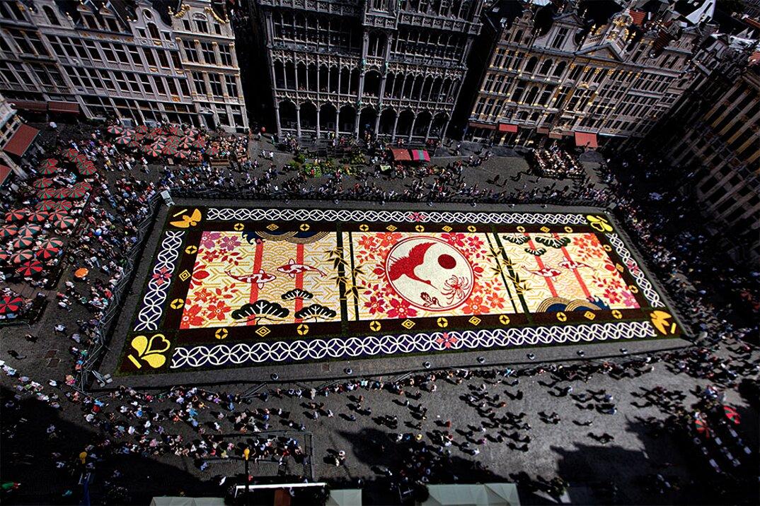 tappeto-fiori-petali-street-art-tapis-de-fleur-grand-place-bruxelles-08
