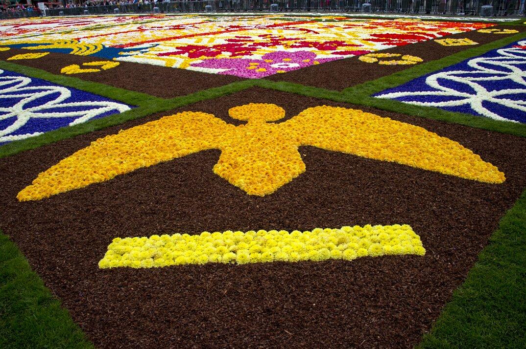 Tappeto Floreale Bruxelles : Ferragosto floreale nelle fiandre tappeti di fiori e giardini
