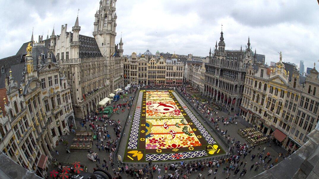 Tappeto Floreale Bruxelles : Grand place tappeto floreale tapis des fleurs vista notturna