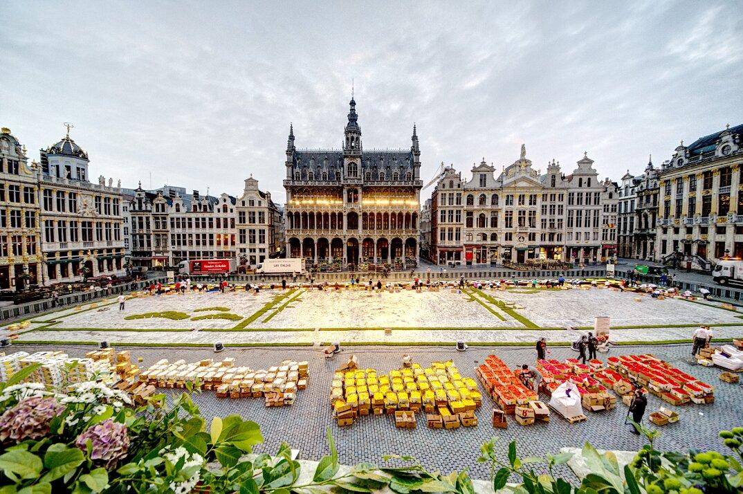 Tappeto Floreale Bruxelles : La natura a bruxelles visitflanders