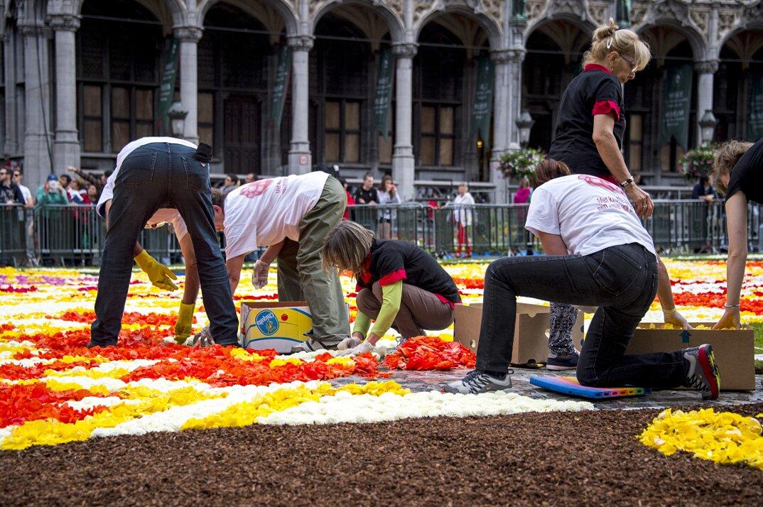 Tappeto Floreale Bruxelles : Il tappeto in english sotto il tappeto xiii seminario redattore