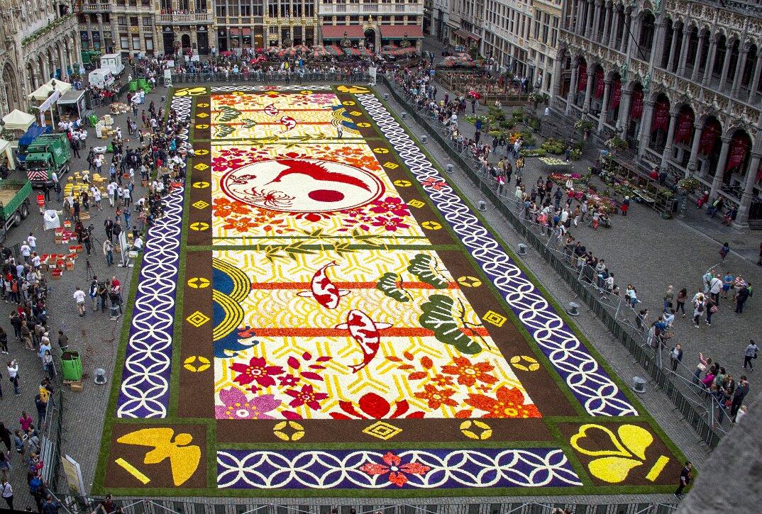 tappeto-fiori-petali-street-art-tapis-de-fleur-grand-place-bruxelles-15