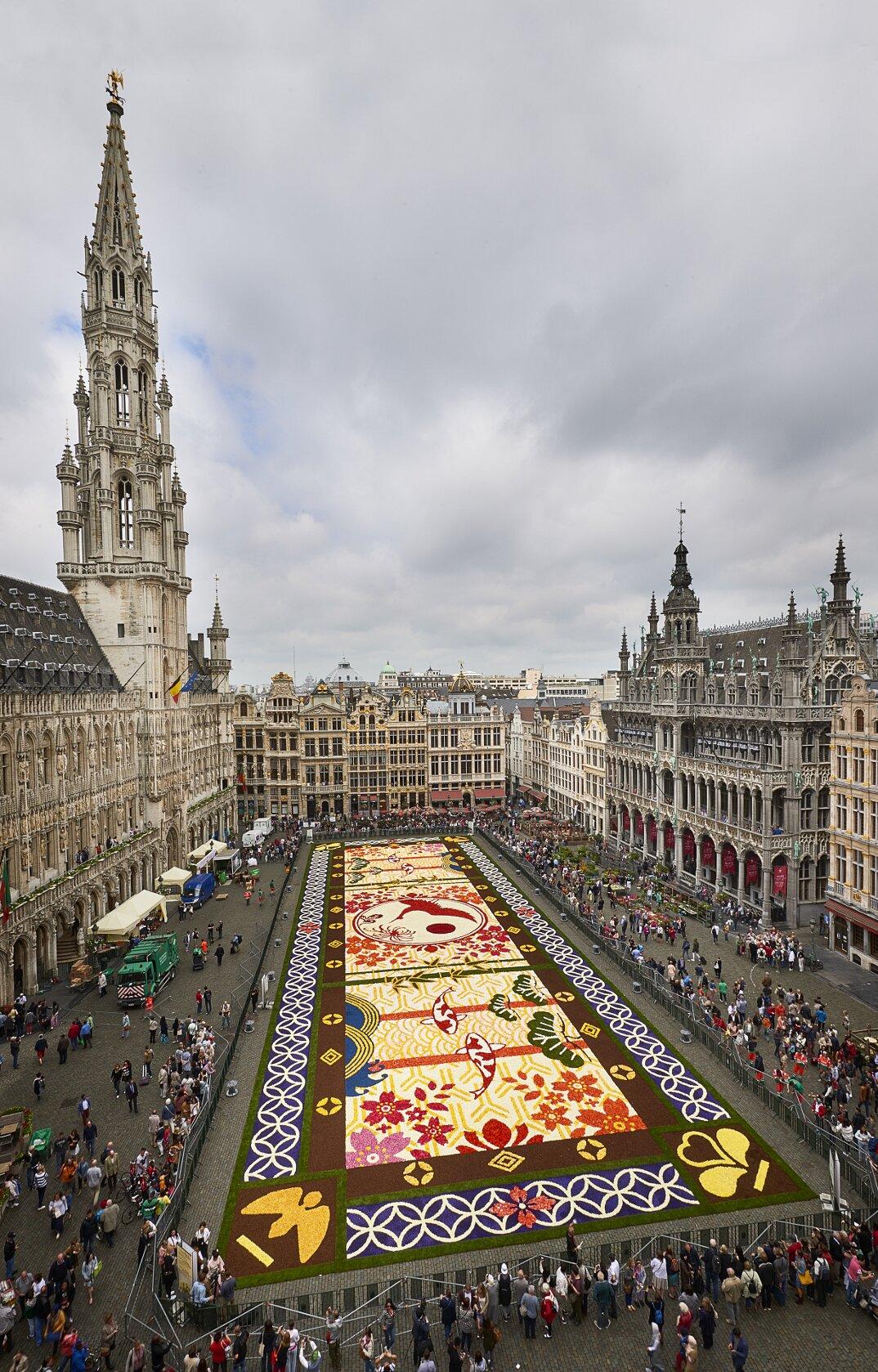 tappeto-fiori-petali-street-art-tapis-de-fleur-grand-place-bruxelles-18