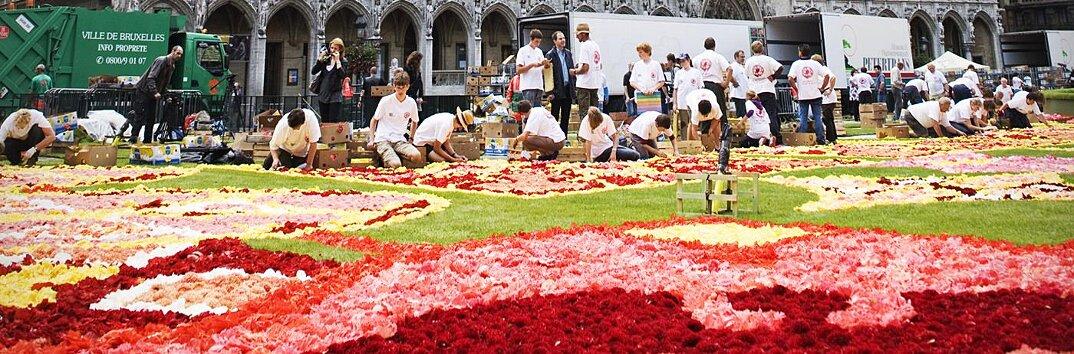 tappeto-fiori-petali-street-art-tapis-de-fleur-grand-place-bruxelles-19