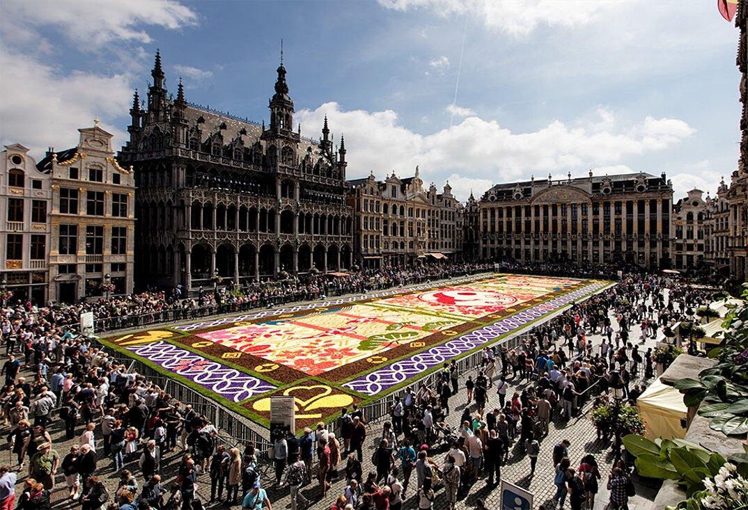 tappeto-fiori-petali-street-art-tapis-de-fleur-grand-place-bruxelles-20