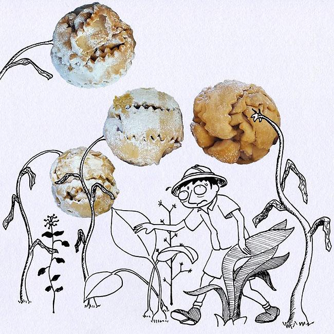 illustrazioni-vignette-cibi-veri-disegni-massimo-fenati-14