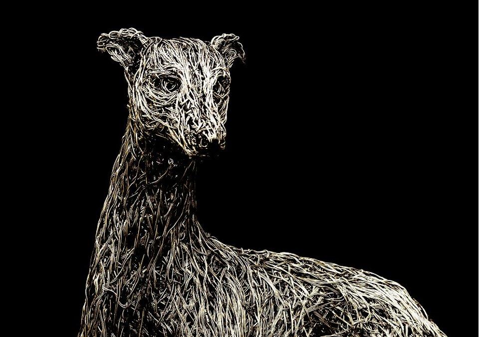 sculture-filo-metallico-animali-candice-bees-39