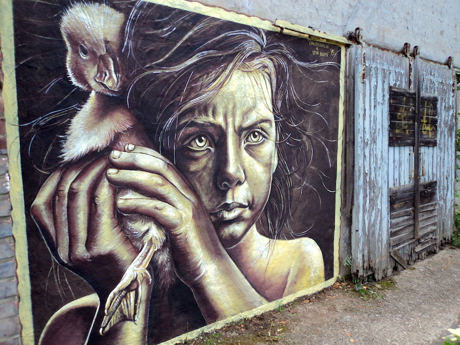 street-painting-pittura-anamorfica-vera-bugatti-21