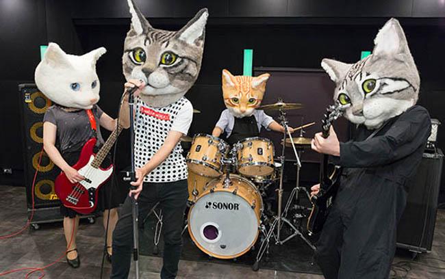 teste-gatto-giganti-maschere-housetu-sato-1