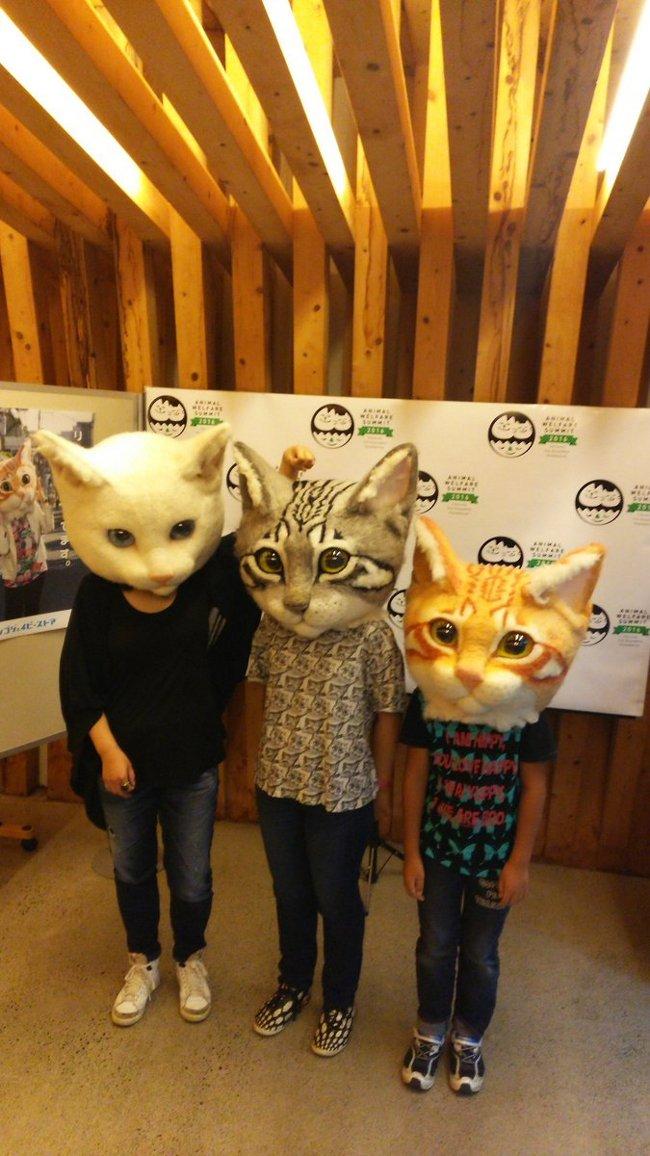 teste-gatto-giganti-maschere-housetu-sato-5