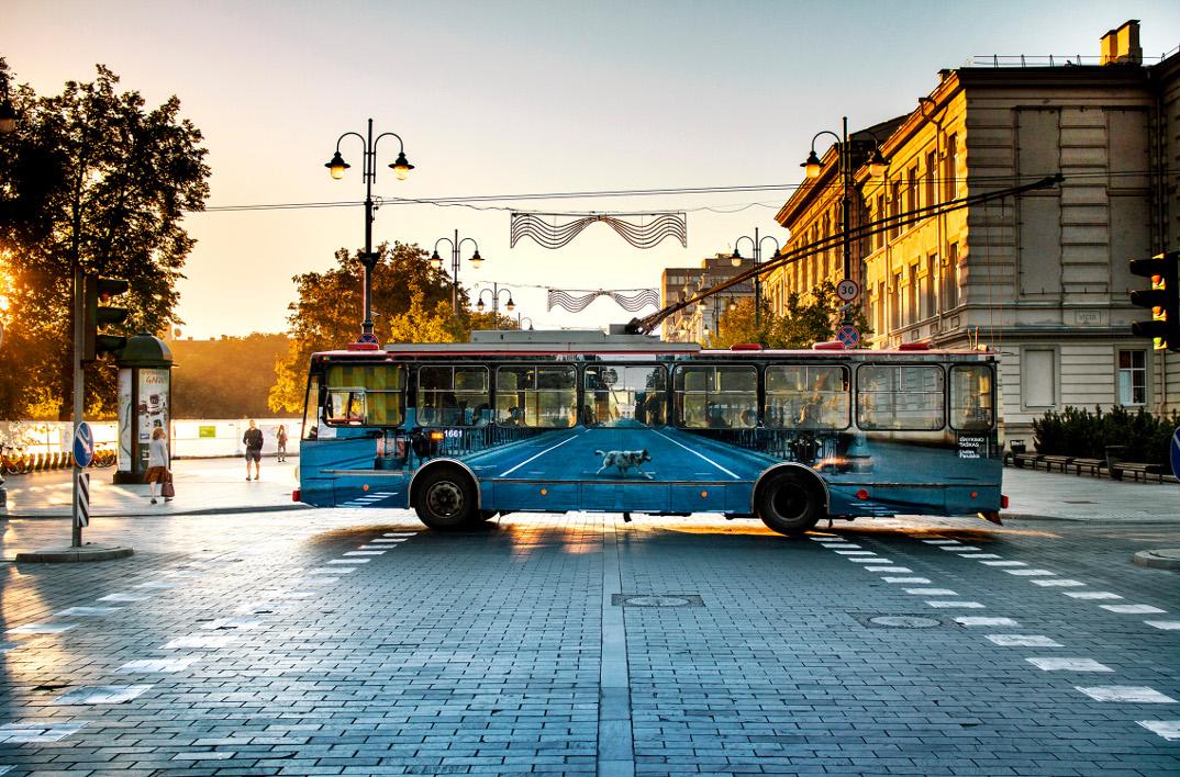 festival-street-art-vilnius-filobus-dipinto-liudas-parulskis-16