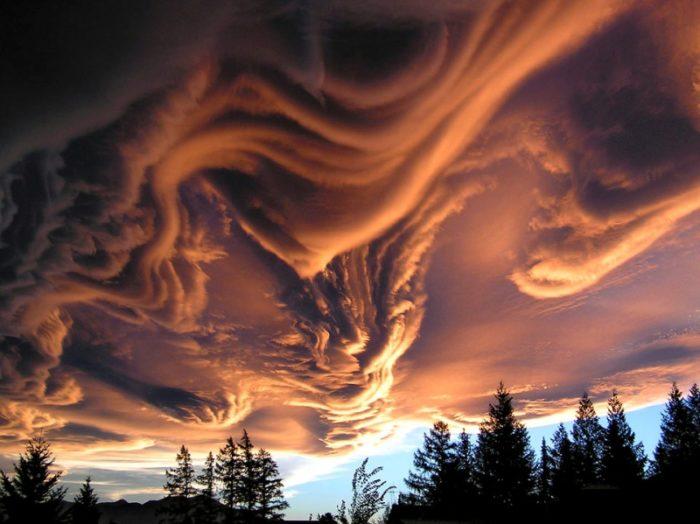 Illusioni Ottiche Che Esistono In Natura