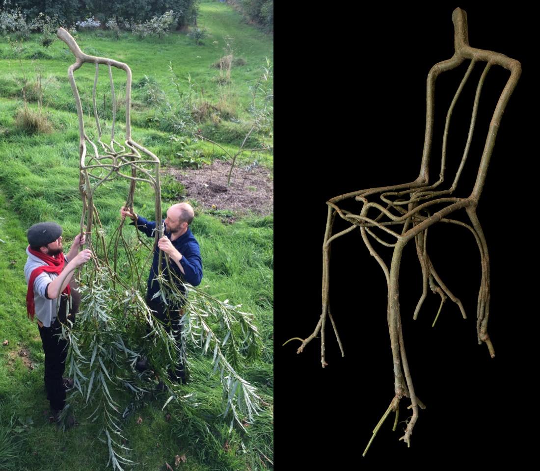 sedie-crescono-su-alberi-full-grown-gavin-munro-8