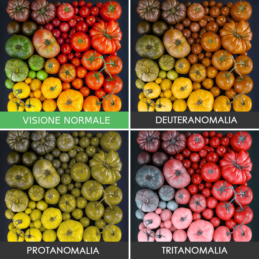 come-vedono-colori-daltonici-07
