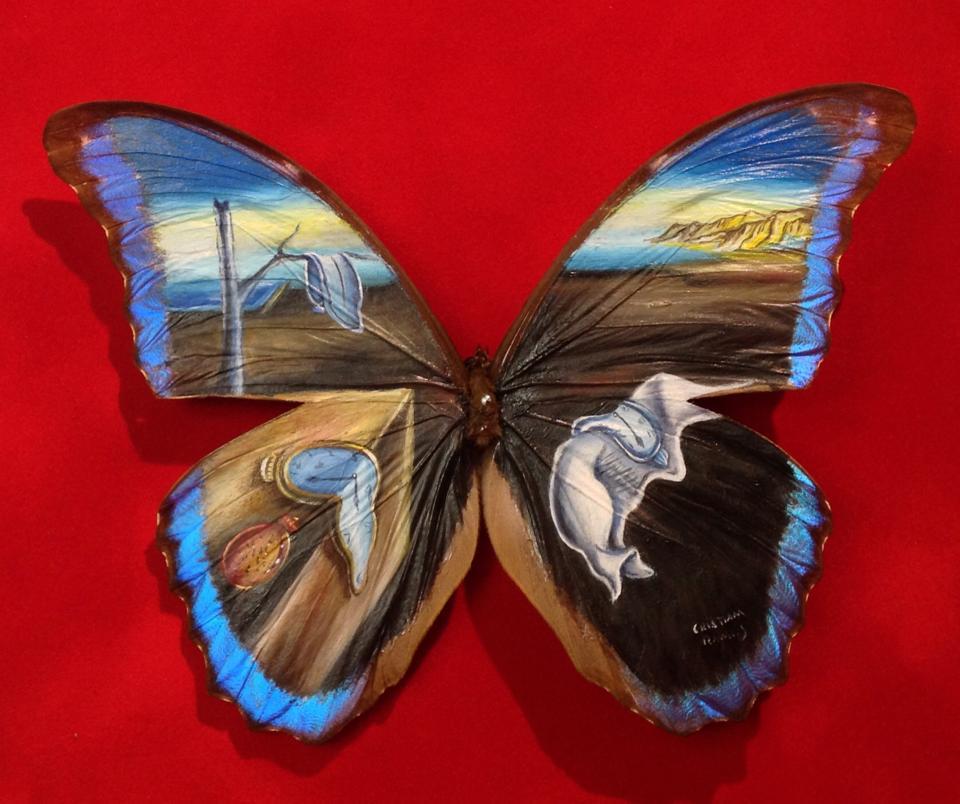 dipinge-ali-farfalle-cristiam-ramos-09
