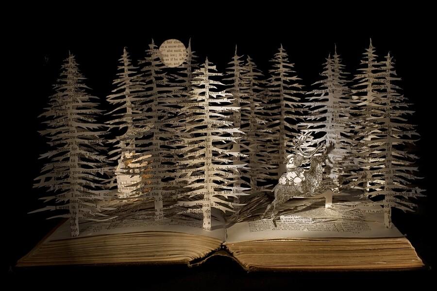 sculture-carta-pagine-libri-su-blackwell-10-keb
