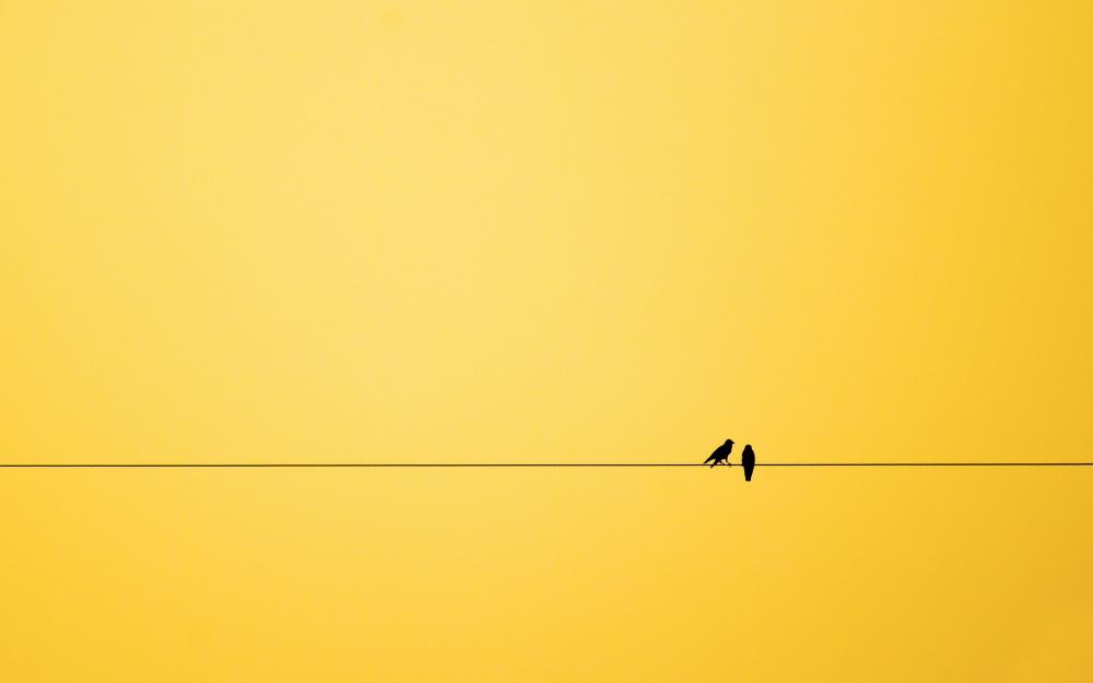18 affascinanti immagini mostrano la bellezza del for Foto minimaliste