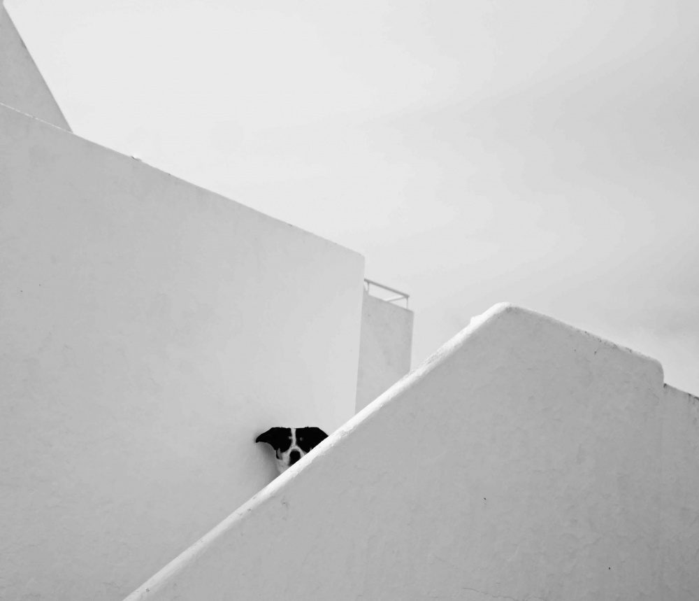 bellissime-foto-minimal-07