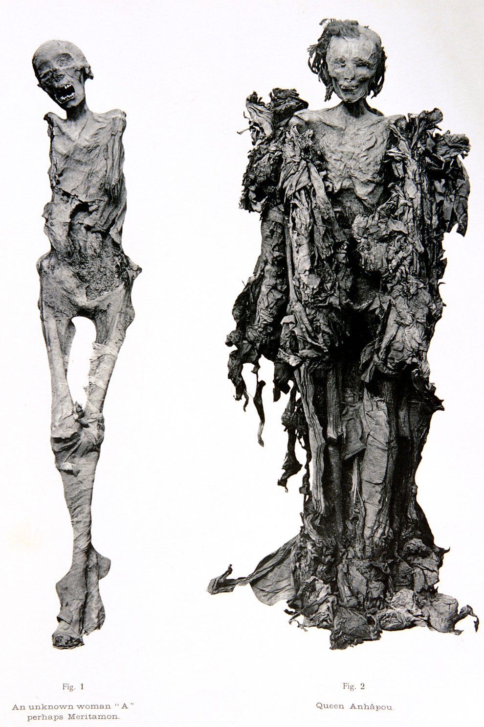 mummie-egiziane-foto-museo-cairo-03