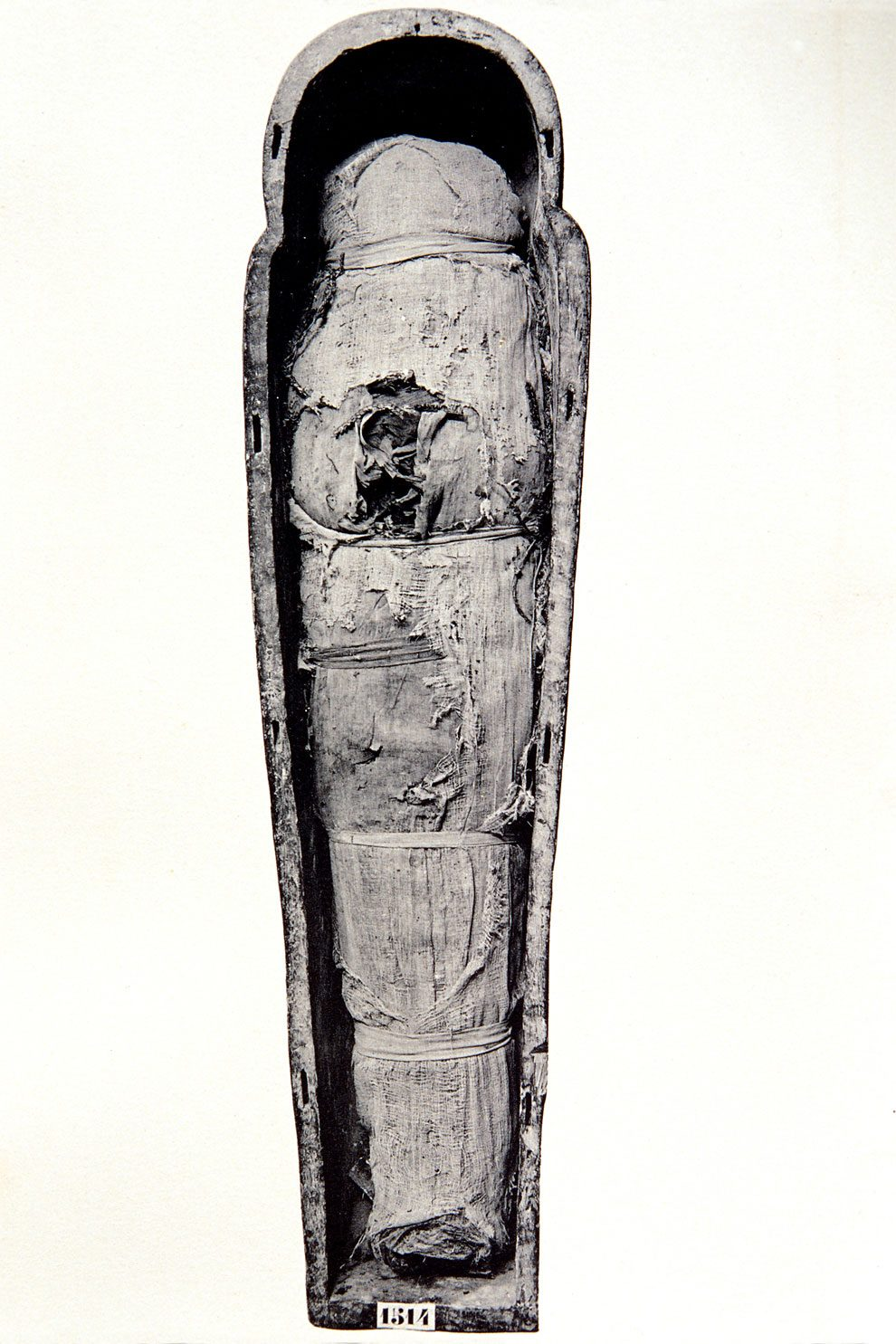 mummie-egiziane-foto-museo-cairo-04