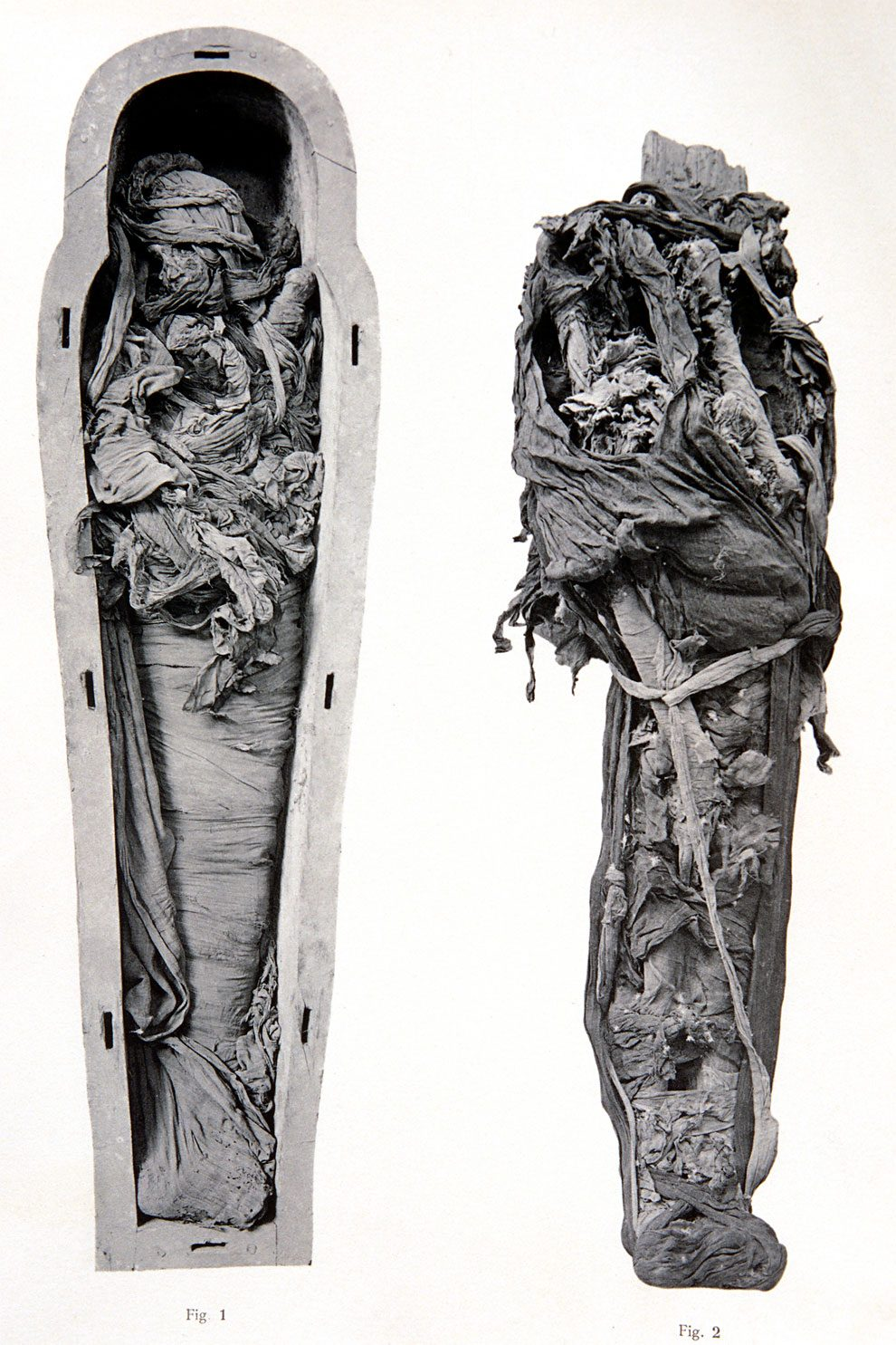mummie-egiziane-foto-museo-cairo-06