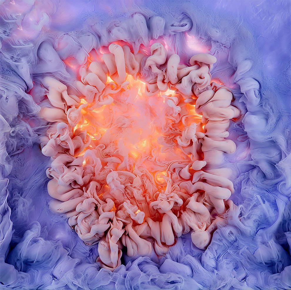 fiori-liquidi-aqueous-fotografia-mark-mawson-01