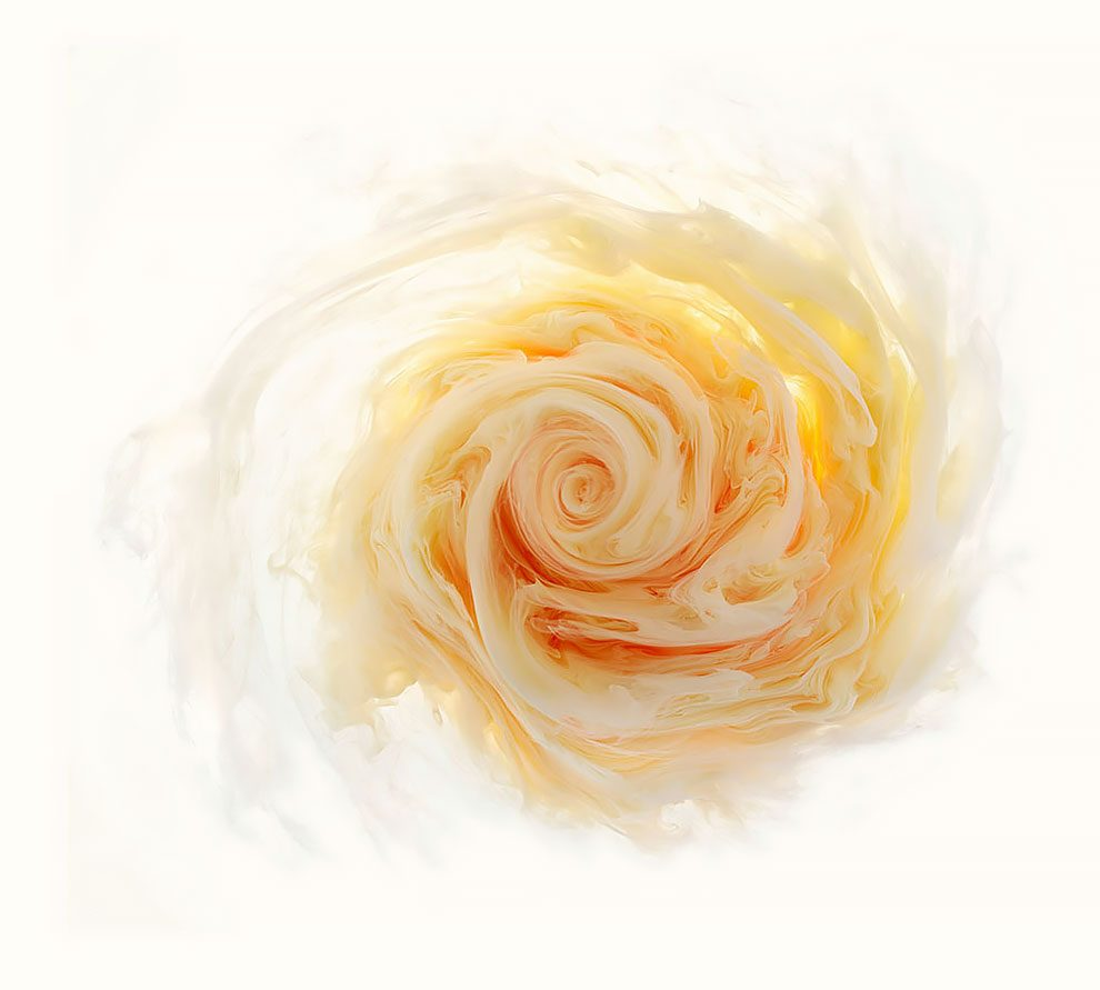 fiori-liquidi-aqueous-fotografia-mark-mawson-03