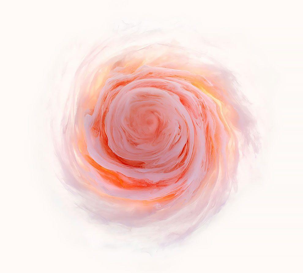 fiori-liquidi-aqueous-fotografia-mark-mawson-04
