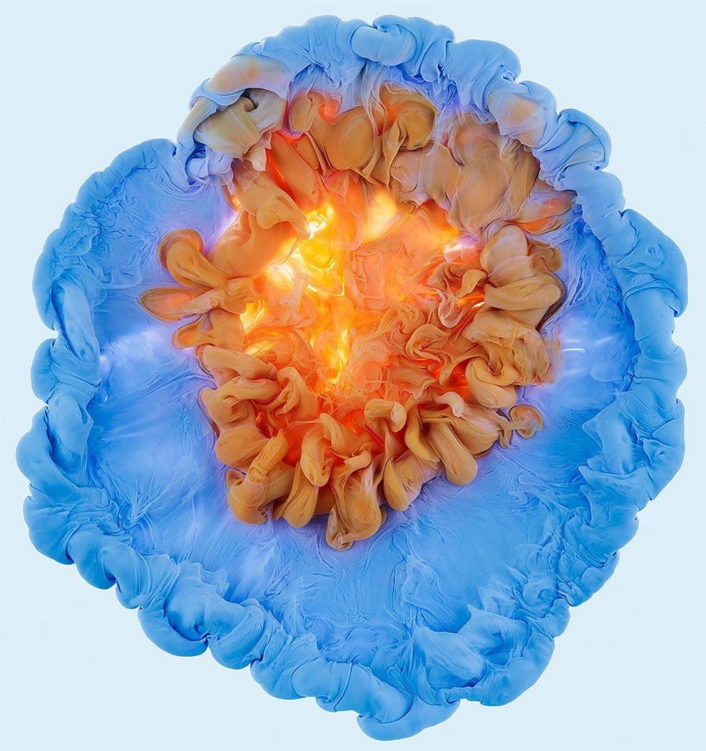 fiori-liquidi-aqueous-fotografia-mark-mawson-07