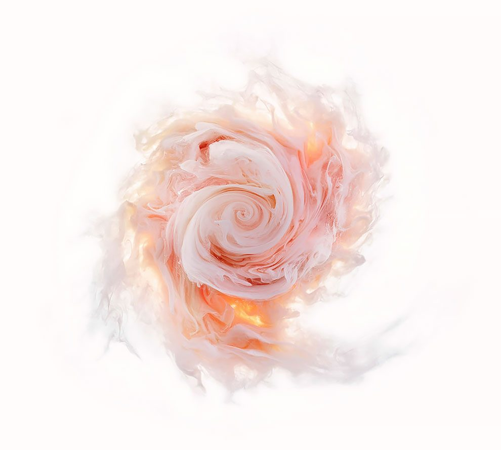 fiori-liquidi-aqueous-fotografia-mark-mawson-08