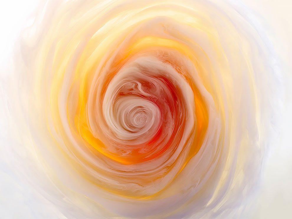 fiori-liquidi-aqueous-fotografia-mark-mawson-10