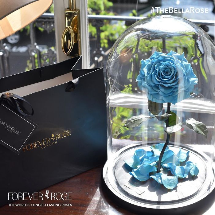 rose-eterne-bella-bestia-3-anni-forever-rose-04