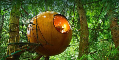 Una casa sull'albero, ma di design: 21 esempi tra i più ...