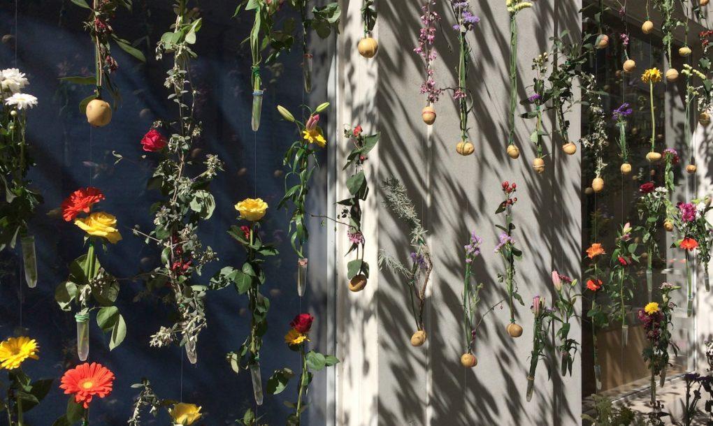 fiori-facciata-palazzo-milano-flowerprint-piuarch-brera-10