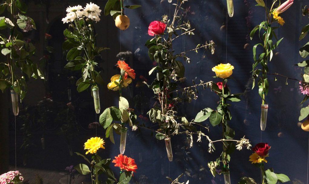 fiori-facciata-palazzo-milano-flowerprint-piuarch-brera-13