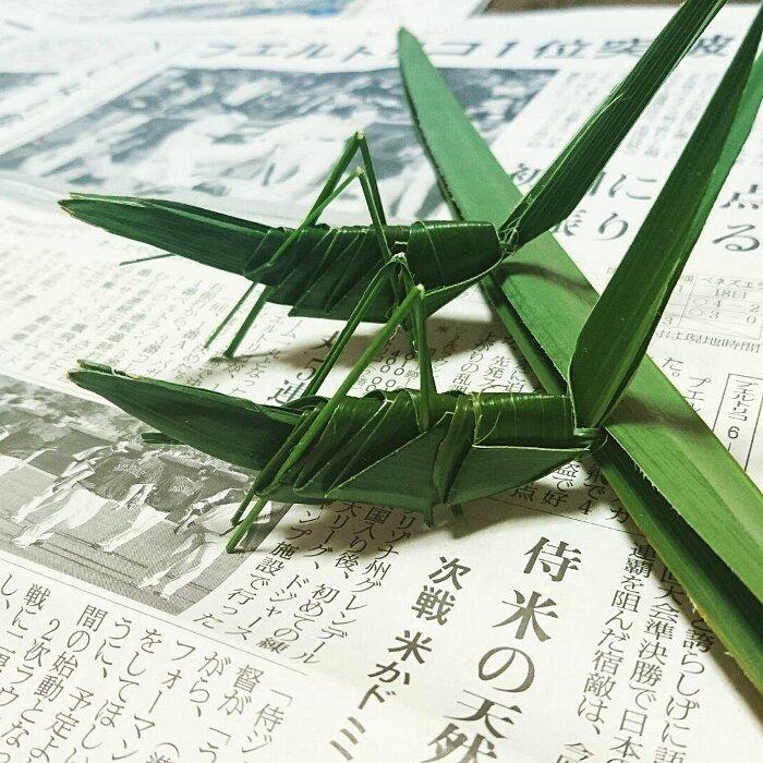 frutti-incisi-verdura-arte-gaku-13