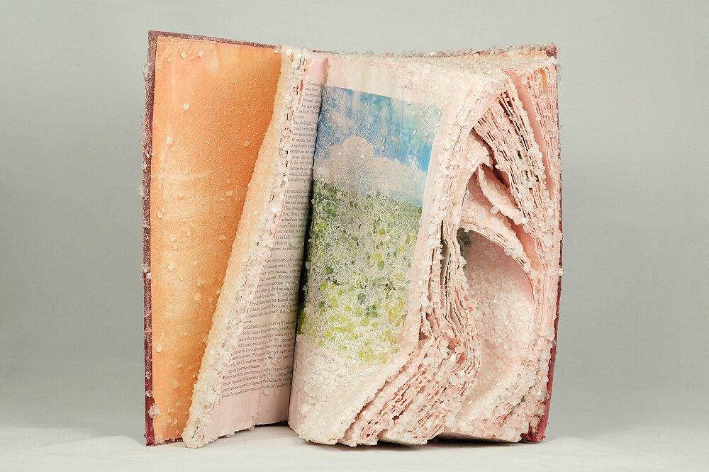 libri-cristallizzati-alexis-arnold-06
