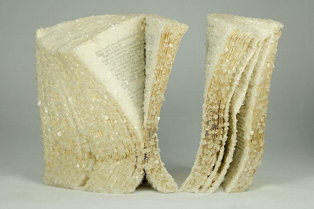 libri-cristallizzati-alexis-arnold-12