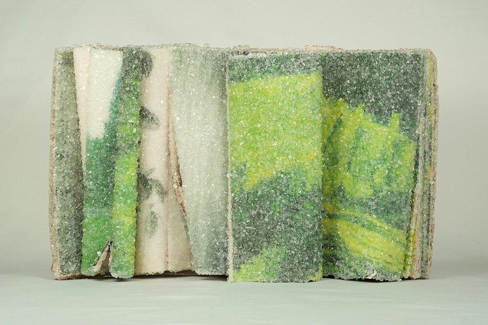 libri-cristallizzati-alexis-arnold-13