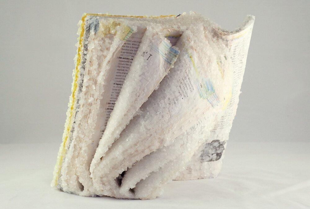 libri-cristallizzati-alexis-arnold-15
