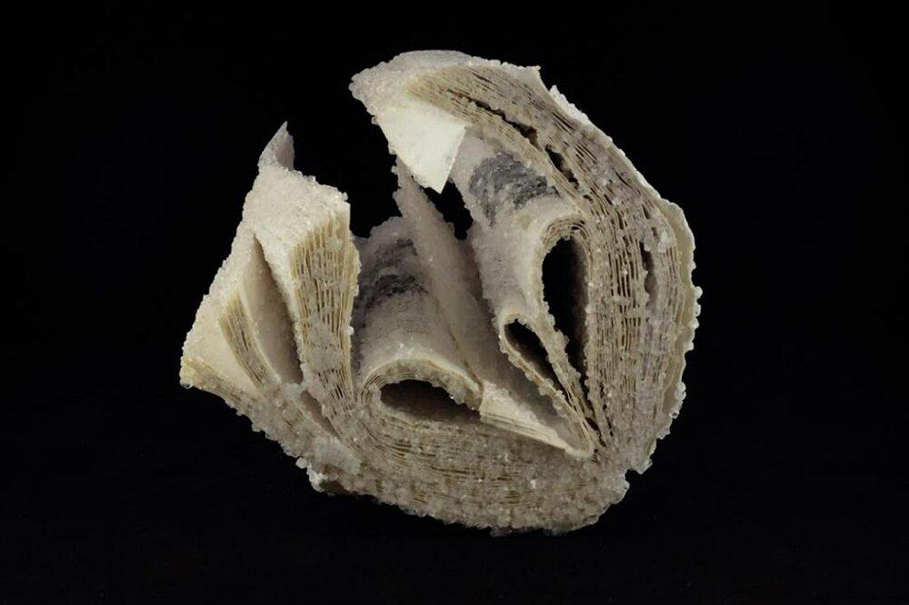 libri-cristallizzati-alexis-arnold-17