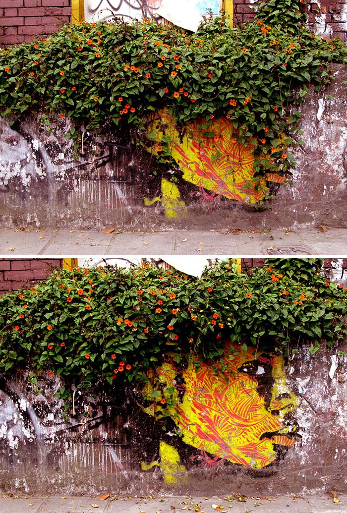 street-art-natura-mondo-03